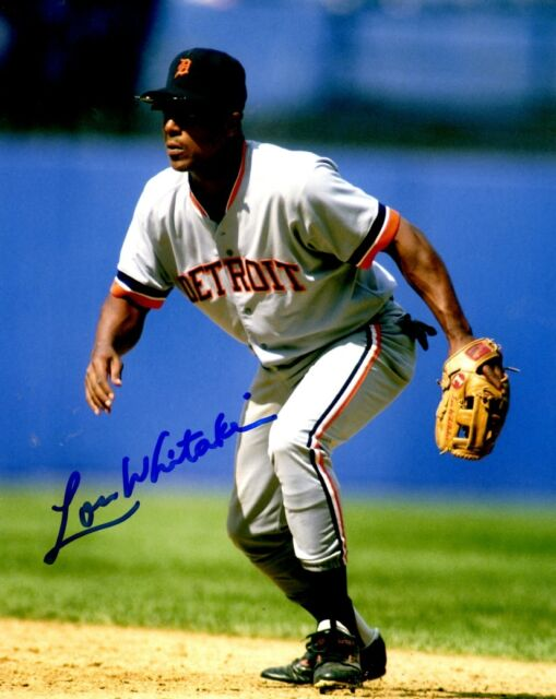 Signed  8x10 LOU WHITAKER  Detroit Tigers  Autographed photo - COA