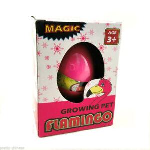 Magic-Hatching-Flamingo-Egg