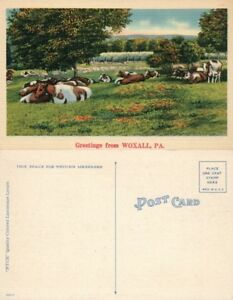 GREETINGS-FROM-WOXALL-PA-VINTAGE-POSTCARD-farm-scene