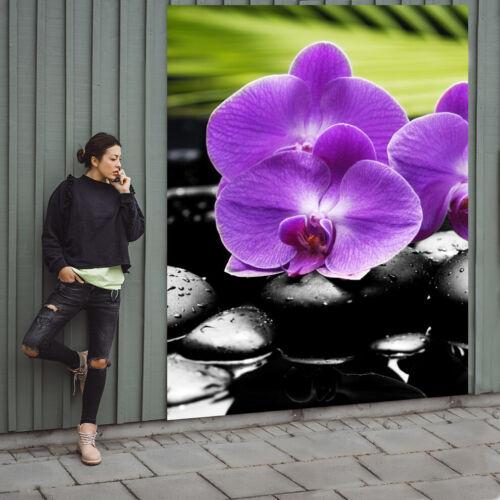 Fototapete Papier Tapete Lila Orchidee Nr HS1997