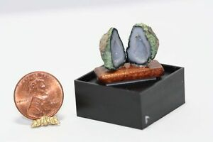 Dollhouse Miniature 1:12 Geode Cut in Half on Wood Base (Set 6)