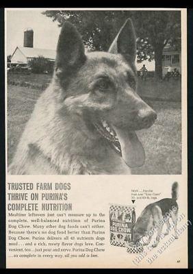 1970 Deutscher Schäferhund Foto Purina Hund Chow Vintage Druck Anzeige