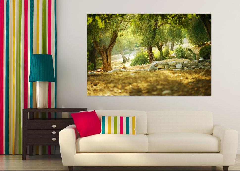 3D Stein Willow Kaktus Wiese 90 Fototapeten Wandbild BildTapete AJSTORE DE Lemon   Zürich