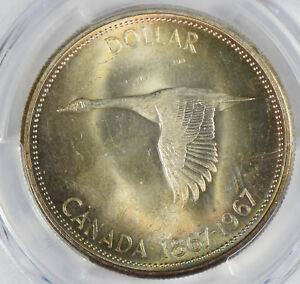 Canada-1967-Dollar-silver-PCGS-MS64-stunning-blue-golden-toning-PC0306-combine-s