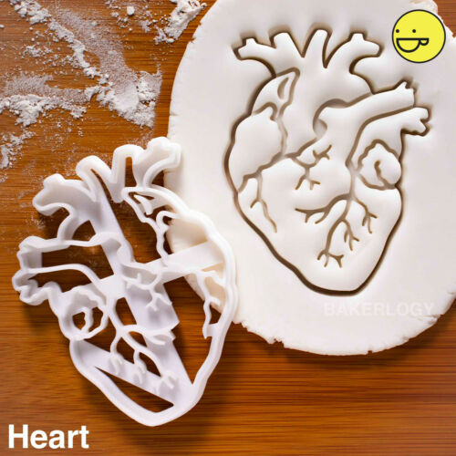 Perfect for macabre lovers /& medical personnels Anatomical Heart cookie cutter