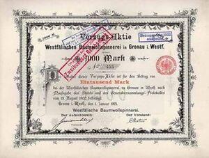 WESTFALISCHE-BAUMWOLLSPINNEREI-Gronau-histor-Textil-Aktie-1901-Muensterland-NRW