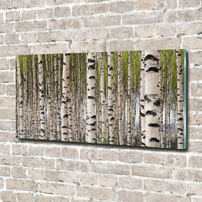 Wandbild aus Plexiglas® Druck auf Acryl 140x70 Blaumen & Pflanzen Birkenwald