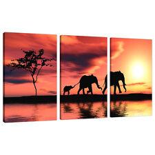 3 pezzi arancione TELA IMMAGINI ARTE AFRICA ELEFANTI MURO STAMPE 3102
