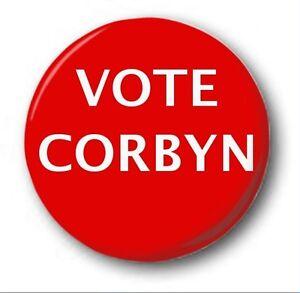 Vote-CALIDAD-25mm-2-5cm-Boton-Insignia-ORIGINAL-ELECCIONES-brexit-LABORISTA