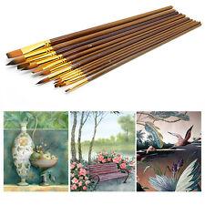 12Pcs Fine Paint Brushes For Acrylic Painter Artists Sizes Brush Painting Set
