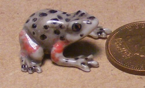 1:12 Scale Multi Coloured Ceramic Frog Tumdee Dolls House Garden Pet Ornament O