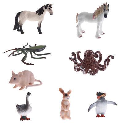 Simulation Wildlife// Farm Animal Model Figurine Educational Nature /& Science Toy