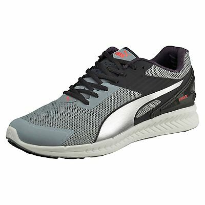PUMA Chaussure de course IGNITE v2 Course Chaussures Hommes Neuf