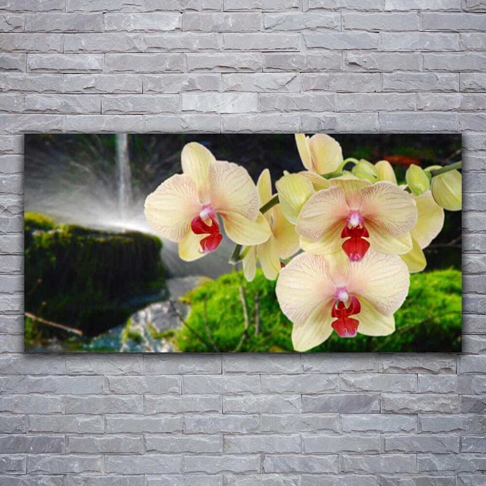 Photo sur toile Tableau Image Impression 120x60 Floral Arbres