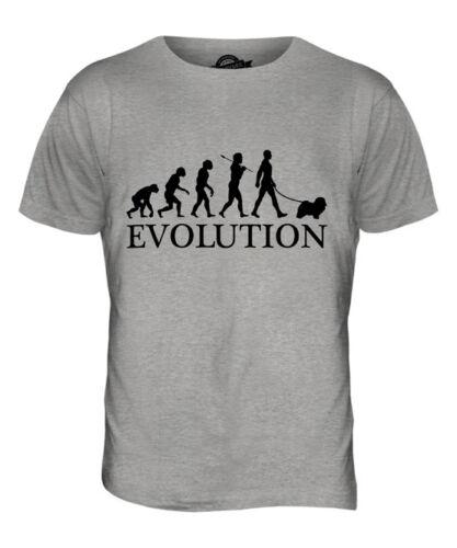 HAVANESE EVOLUTION OF MAN MENS T-SHIRT TEE TOP DOG LOVER GIFT WALKER WALKING