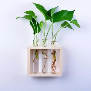 wood hanging flower vase bottle in stand terrarium home party