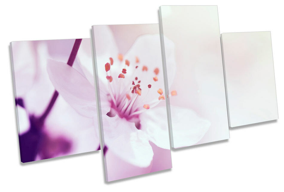 Cherry Branch Blossom Flower MULTI CANVAS Wand Kunst Boxed Framed