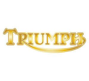 2 x GOLD Triumph Tank Decals Pair Vinyl Stickers Car Van Bike Motorbike