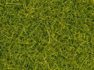 NOCH-08363-Fine-Turf-Grass-034-Light-Green-034-4mm-Contents-20g-100g-11-75-Euro