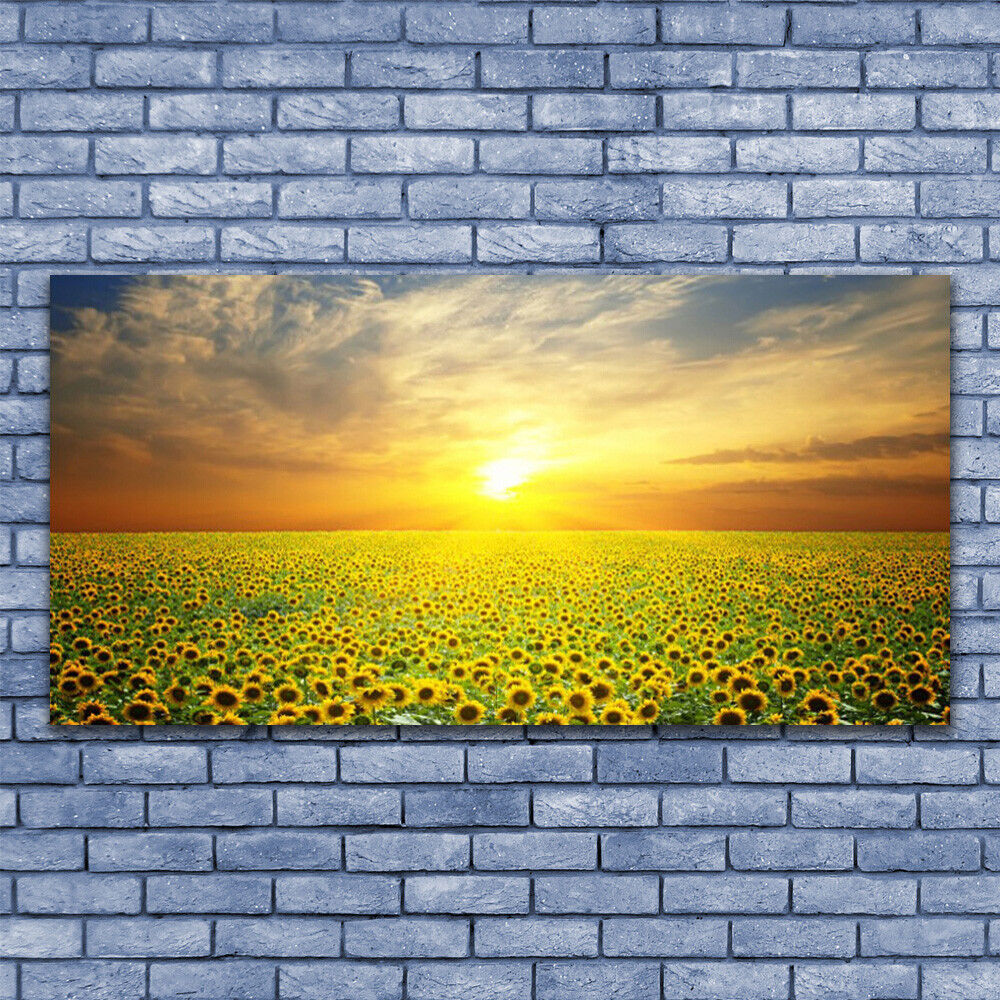 Glass print Wall art 140x70 Image Picture Sun Meadow Sunflowers Nature