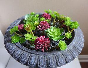 Nice Image Is Loading Artificial Miniature Plants Succulents Fairy Garden Grass  Set