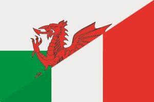 Fahne Flagge Schweiz-Italien 20 x 30 cm Bootsflagge Premiumqualität