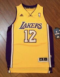 Dwight Howard Los Angeles Lakers Adidas Swingman Jersey Youth ...