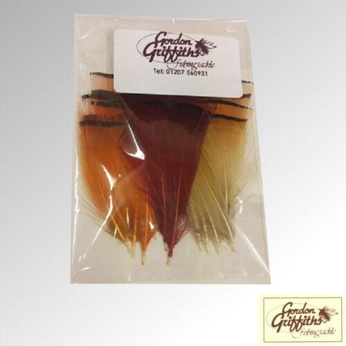 Gordon Griffiths Faisan Doré Tippet plumes Medium 30 Pack Mixte gptm