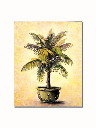 Christmas Palm in Embossed Pot #1 Wall Picture 8x10 Art Print