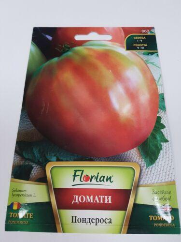 Ponderosa Giant Beef Tomato Bulgaria 150 SEEDS Oxheart Beefsteak 500 g