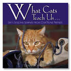 What Cats Teach Us...: Life's Lessons Learned from Our Feline Friends by Glenn Dromgoole (Hardback, 2004)