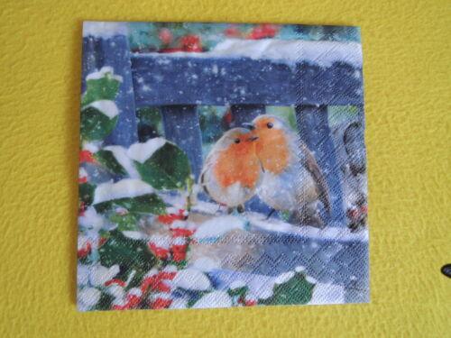 20 Serviettes Rouge-gorges Lovely Robin hiver 1 boîte neuf dans sa boîte oiseaux Paire Banque int