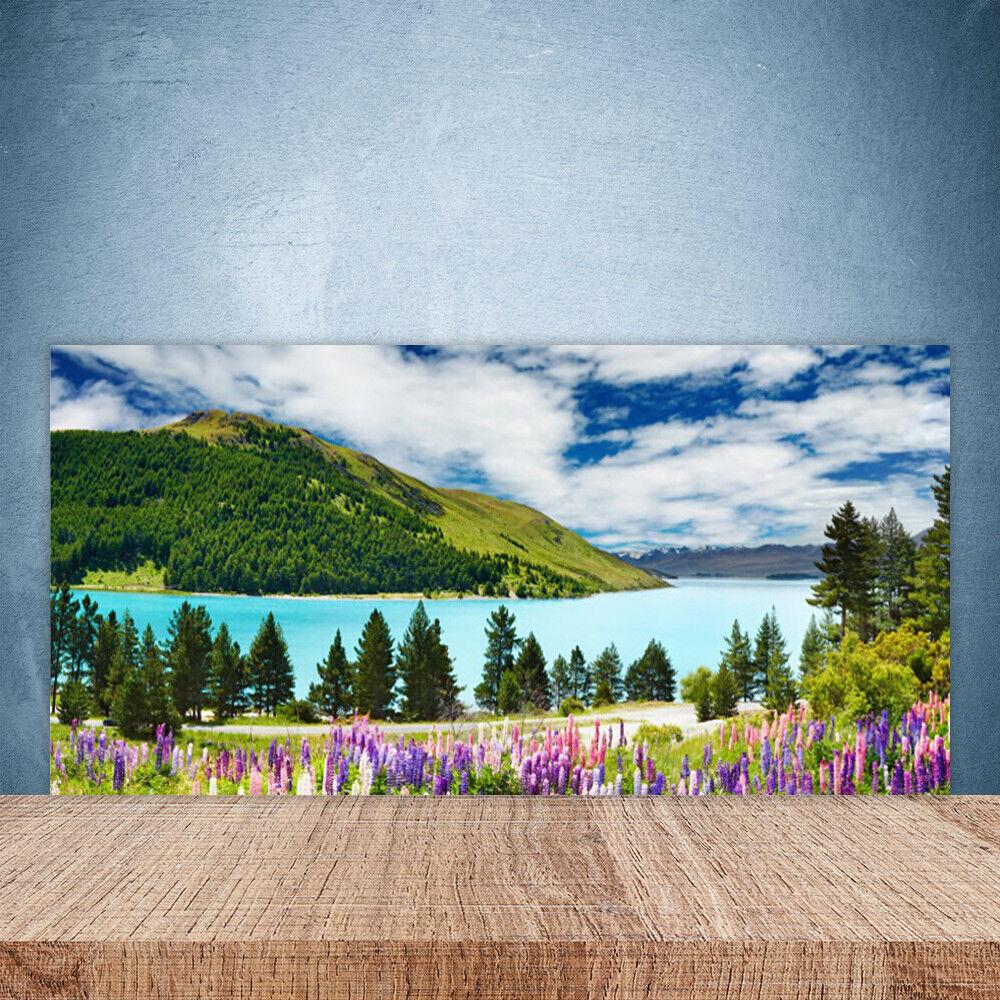 Vidrio Templado Cocina salpicaduras 100x50 bosque de montaña prado lago paisaje
