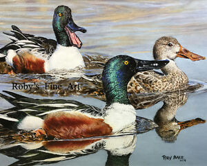 034-Shovelers-034-Duck-Art-Print-8-034-x-10-034-Giclee-Image-by-Realism-Artist-Roby-Baer-PSA