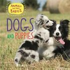 Dogs & Puppies by Annabelle Lynch, Franklin Watts (Hardback, 2016)