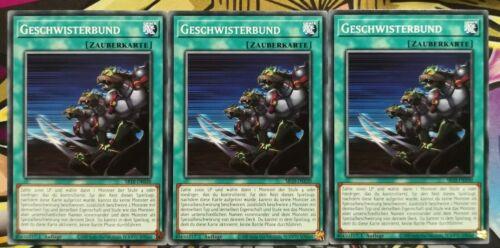 Tirage allemand PLAYSET Presque comme neuf Yu-Gi-Oh 3x geschwisterbund sr10-de030 Common 1