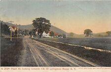 B18/ Livingston Manor New York NY Postcard 1907 Pearl Street Homes Elk Mountain
