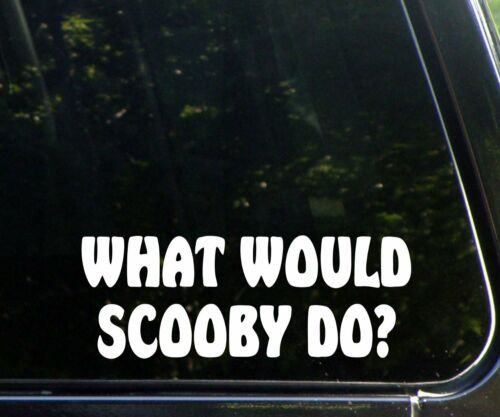 BUMPER STICKER VINYL DECAL CDD-50022 WHAT WOULD SCOOBY DOO