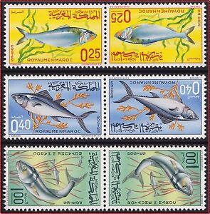 Modeste 1967 Maroc N°514a/516a** La Série Tête-bêche, Poissons, 1967 Morocco Fishes Mnh