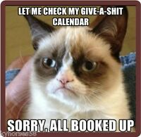 Funny Humor Grumpy Cat Check My Calendar Refrigerator Magnet