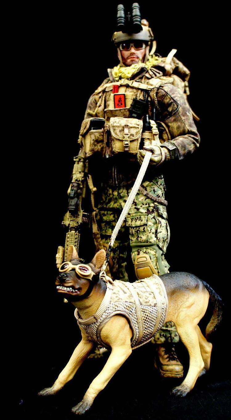BBI Elite Force 2012 Edición de aniversario Us Navy Seal Team 6 DEVGRU Menta en caja en mano