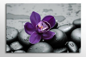 Image Is Loading STUNNING LARGE CANVAS WALL ART GREY PURPLE FLOWER