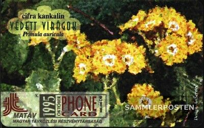 Haben Sie Einen Fragenden Verstand Ungarn 9501 50 Einheiten Gebraucht 1995 Primula Auricula Reine WeißE Sammeln & Seltenes