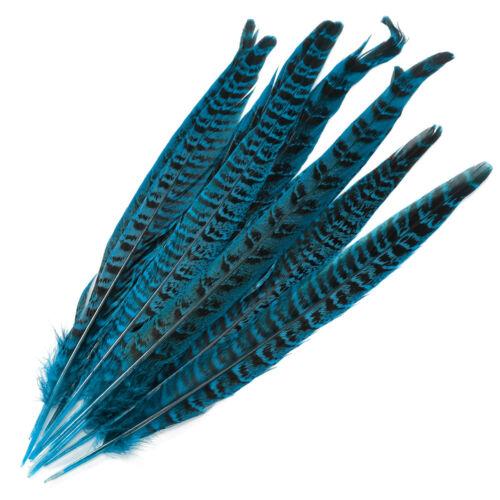 Backmischung Fasanenfedern Vogelfedern 25 Bis 30cm Flügelfedern 10tlg