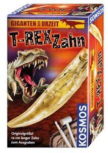 Kosmos-630492-T-Rex-denti-ausgrabung-NUOVO-conf-orig