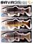 SAVAGE-GEAR-3D-PRO-SERIES-PHOTO-LINE-THRU-SWIMBAIT-SLOW-SINKING-SELECT-COLOR thumbnail 1