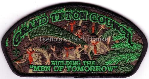 Grand Teton Council 2017 Bluebadge District Training Csp Mint Cond FREE SHIPPING