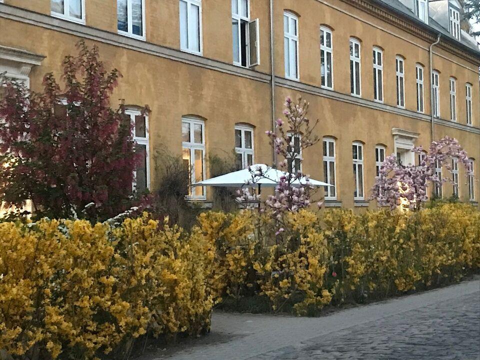 Frederiksberg , Andelslejlighed byttes, 2000