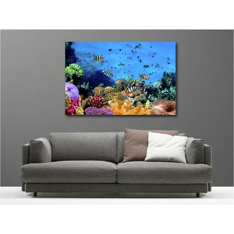 Canvas Fabric Deco Rectangle Small Fish Tropical 64070425