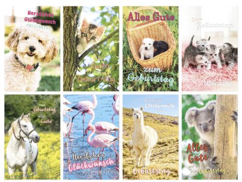 10 Stück verschiedene Geburtstagskarten Glückwunschkarten Cuvert Cellophan Tiere